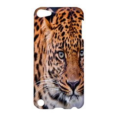 Tiger Beetle Lion Tiger Animals Leopard Apple Ipod Touch 5 Hardshell Case by Mariart