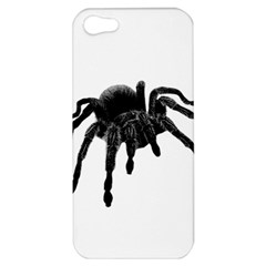 Tarantula Apple Iphone 5 Hardshell Case by Valentinaart