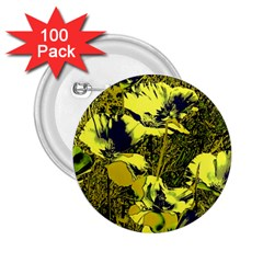 Amazing Glowing Flowers 2c 2 25  Buttons (100 Pack)  by MoreColorsinLife