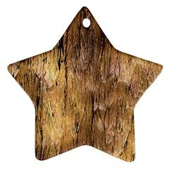 Grannys Hut   Structure 3a Star Ornament (two Sides)