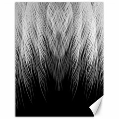 Feather Graphic Design Background Canvas 12  X 16   by Onesevenart