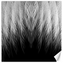 Feather Graphic Design Background Canvas 16  X 16   by Onesevenart