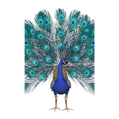 Peacock Bird Peacock Feathers Shower Curtain 48  X 72  (small)  by Onesevenart