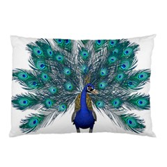 Peacock Bird Peacock Feathers Pillow Case (two Sides) by Onesevenart