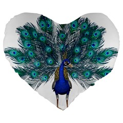 Peacock Bird Peacock Feathers Large 19  Premium Heart Shape Cushions by Onesevenart