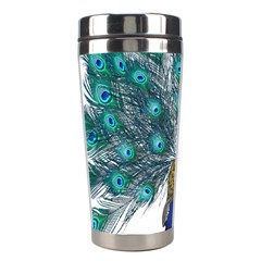 Peacock Bird Peacock Feathers Stainless Steel Travel Tumblers by Onesevenart