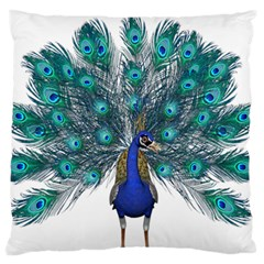 Peacock Bird Peacock Feathers Large Flano Cushion Case (two Sides) by Onesevenart