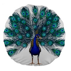 Peacock Bird Peacock Feathers Large 18  Premium Flano Round Cushions by Onesevenart
