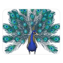 Peacock Bird Peacock Feathers Double Sided Flano Blanket (large)  by Onesevenart