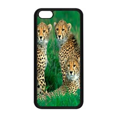 Animals Cheetah Apple Iphone 5c Seamless Case (black) by Jojostore