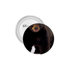 Brown Bears Animals 1 75  Buttons by Jojostore