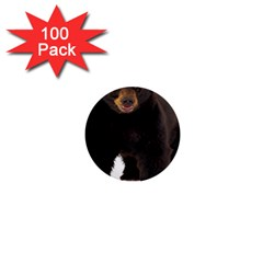 Brown Bears Animals 1  Mini Buttons (100 Pack)  by Jojostore