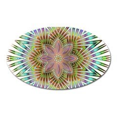 Star Flower Glass Sexy Chromatic Symmetric Oval Magnet by Jojostore