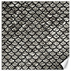Scales1 Black Marble & Silver Foil Canvas 20  X 20