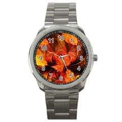 Ablaze With Beautiful Fractal Fall Colors Sport Metal Watch by jayaprime