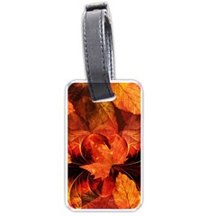Ablaze With Beautiful Fractal Fall Colors Luggage Tags (one Side)  by jayaprime