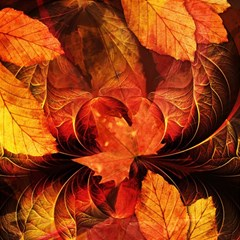 Ablaze With Beautiful Fractal Fall Colors Magic Photo Cubes by beautifulfractals