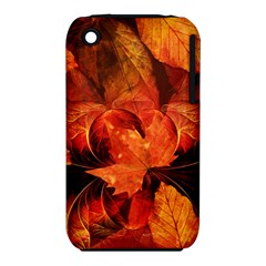Ablaze With Beautiful Fractal Fall Colors Iphone 3s/3gs