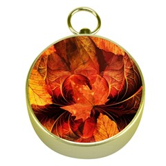 Ablaze With Beautiful Fractal Fall Colors Gold Compasses by beautifulfractals