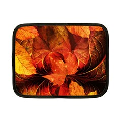 Ablaze With Beautiful Fractal Fall Colors Netbook Case (small)  by beautifulfractals