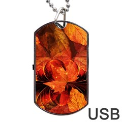 Ablaze With Beautiful Fractal Fall Colors Dog Tag Usb Flash (two Sides) by jayaprime