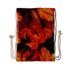 Ablaze With Beautiful Fractal Fall Colors Drawstring Bag (small) by beautifulfractals