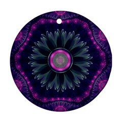 Beautiful Hot Pink And Gray Fractal Anemone Kisses Round Ornament (two Sides) by jayaprime