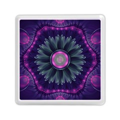 Beautiful Hot Pink And Gray Fractal Anemone Kisses Memory Card Reader (square)  by jayaprime
