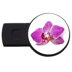 Lilac Phalaenopsis Aquarel  Watercolor Art Painting Usb Flash Drive Round (4 Gb) by picsaspassion