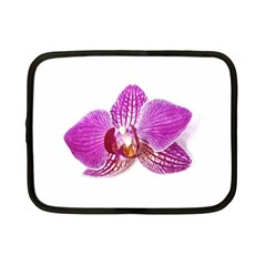 Lilac Phalaenopsis Aquarel  Watercolor Art Painting Netbook Case (small)  by picsaspassion