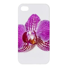 Lilac Phalaenopsis Aquarel  Watercolor Art Painting Apple Iphone 4/4s Premium Hardshell Case by picsaspassion