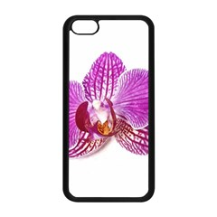 Lilac Phalaenopsis Aquarel  Watercolor Art Painting Apple Iphone 5c Seamless Case (black) by picsaspassion