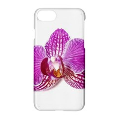 Lilac Phalaenopsis Aquarel  Watercolor Art Painting Apple Iphone 7 Hardshell Case by picsaspassion