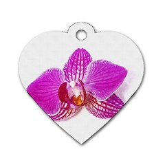 Lilac Phalaenopsis Flower, Floral Oil Painting Art Dog Tag Heart (one Side) by picsaspassion