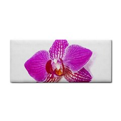 Lilac Phalaenopsis Flower, Floral Oil Painting Art Cosmetic Storage Cases by picsaspassion