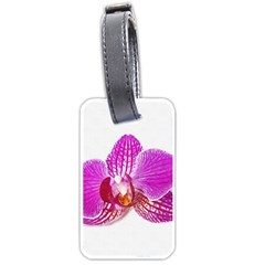Lilac Phalaenopsis Flower, Floral Oil Painting Art Luggage Tags (one Side)  by picsaspassion