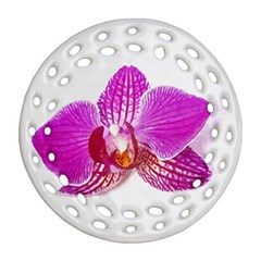 Lilac Phalaenopsis Flower, Floral Oil Painting Art Round Filigree Ornament (two Sides) by picsaspassion