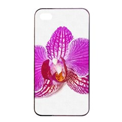 Lilac Phalaenopsis Flower, Floral Oil Painting Art Apple Iphone 4/4s Seamless Case (black) by picsaspassion