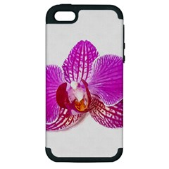 Lilac Phalaenopsis Flower, Floral Oil Painting Art Apple Iphone 5 Hardshell Case (pc+silicone) by picsaspassion