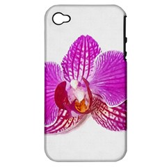 Lilac Phalaenopsis Flower, Floral Oil Painting Art Apple Iphone 4/4s Hardshell Case (pc+silicone) by picsaspassion