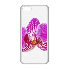 Lilac Phalaenopsis Flower, Floral Oil Painting Art Apple Iphone 5c Seamless Case (white) by picsaspassion