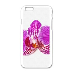 Lilac Phalaenopsis Flower, Floral Oil Painting Art Apple Iphone 6/6s White Enamel Case by picsaspassion