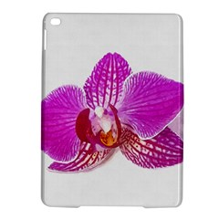 Lilac Phalaenopsis Flower, Floral Oil Painting Art Ipad Air 2 Hardshell Cases by picsaspassion