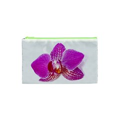 Lilac Phalaenopsis Flower, Floral Oil Painting Art Cosmetic Bag (xs) by picsaspassion