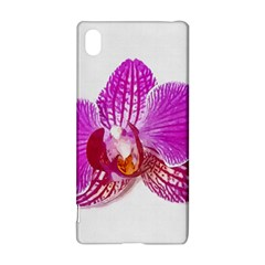 Lilac Phalaenopsis Flower, Floral Oil Painting Art Sony Xperia Z3+ by picsaspassion