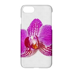 Lilac Phalaenopsis Flower, Floral Oil Painting Art Apple Iphone 7 Hardshell Case by picsaspassion