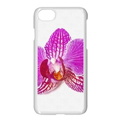 Lilac Phalaenopsis Flower, Floral Oil Painting Art Apple Iphone 7 Seamless Case (white) by picsaspassion