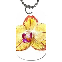 Yellow Phalaenopsis Flower, Floral Aquarel Watercolor Painting Art Dog Tag (two Sides) by picsaspassion