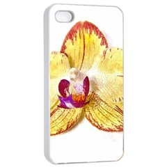 Yellow Phalaenopsis Flower, Floral Aquarel Watercolor Painting Art Apple Iphone 4/4s Seamless Case (white) by picsaspassion