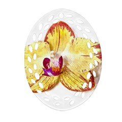 Yellow Phalaenopsis Flower, Floral Aquarel Watercolor Painting Art Oval Filigree Ornament (two Sides) by picsaspassion